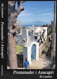bokomslag Promenader i Anacapri