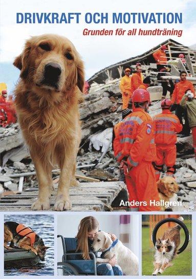 bokomslag Drivkraft och motivation : grunden för all hundträning