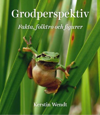 bokomslag Grodperspektiv : fakta, folktro och figurer