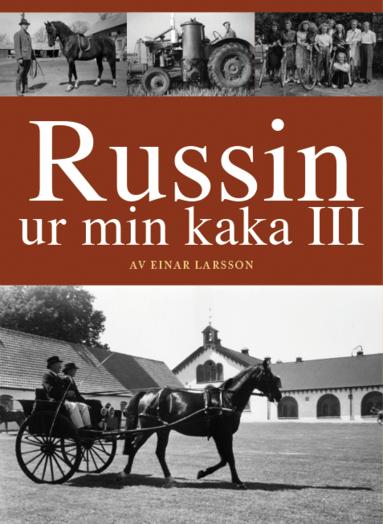 bokomslag Russin ur min kaka III