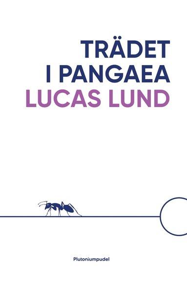 bokomslag Trädet i Pangaea