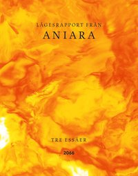 bokomslag Lägesrapport från Aniara : tre essäer
