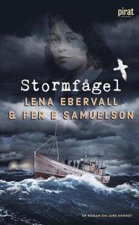bokomslag Stormfågel