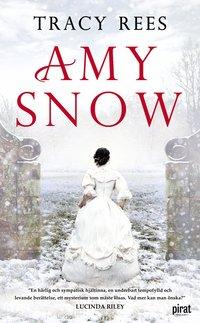 bokomslag Amy Snow