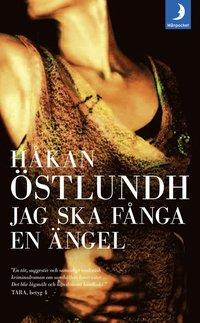 bokomslag Jag ska fånga en ängel