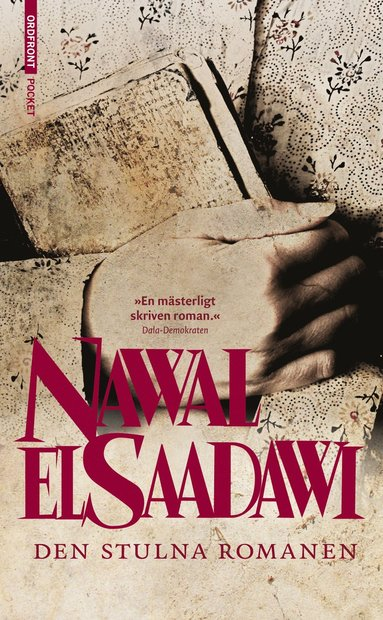 bokomslag Den stulna romanen