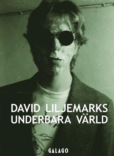 bokomslag David Liljemarks underbara värld