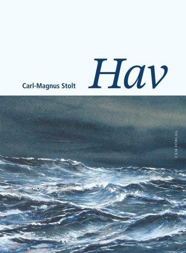 bokomslag Hav - filosofiska strandhugg