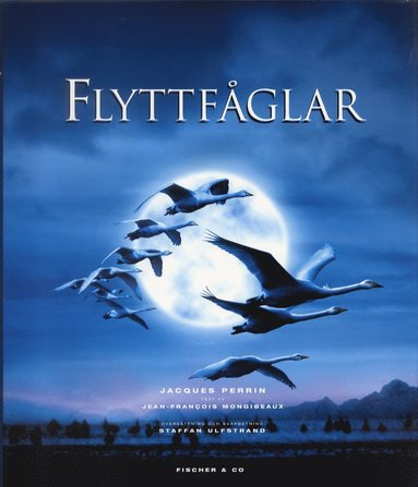bokomslag Flyttfåglar