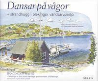 bokomslag Dansar på vågor : strandhugg i blekingsk världsarvsmiljö = Dancing on waves