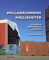 bokomslag Mellanrummens möjligheter : studier av föränderliga landskap