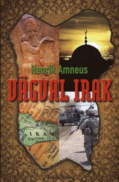 bokomslag Vägval Irak