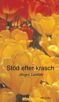bokomslag Stöd efter krasch