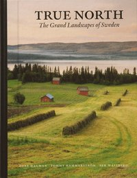 bokomslag True north : the grand landscapes of Sweden (kompakt)
