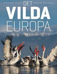 bokomslag Det vilda Europa