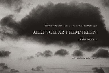 bokomslag Allt som är i himmelen = All that is in heaven