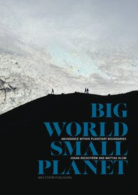 bokomslag Big world, small planet : abundance within planetary boundaries