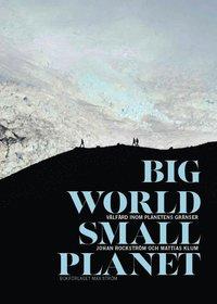 bokomslag Big world, small planet : välfärd inom planetens gränser