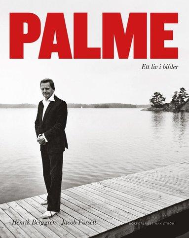 bokomslag Palme : ett liv i bilder