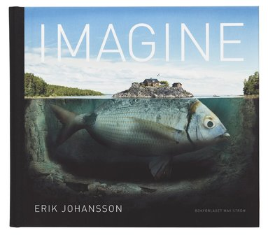 bokomslag Imagine (Engelsk utgåva)