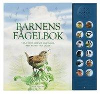 bokomslag Barnens fågelbok : våra mest älskade småfåglar med bilder och läten