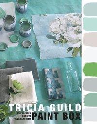 bokomslag Paint Box : 45 paletter för ett vackrare hem