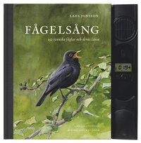 bokomslag Fågelsång : 150 svenska fåglar och deras läten