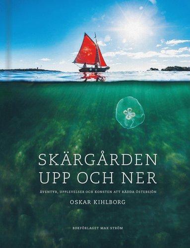 bokomslag Skärgården upp och ner : äventyr, upplevelser och konsten att rädda Östersjön