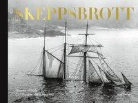 bokomslag Skeppsbrott : Gibsons of Scilly