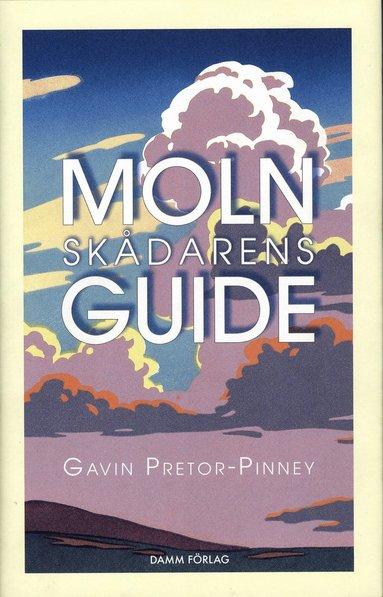 bokomslag Molnskådarens guide