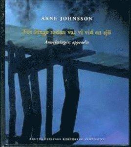 bokomslag För länge sedan var vi vid en sjö : anteckningar; appendix