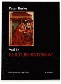 bokomslag Vad är kulturhistoria?