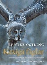 bokomslag Kaxiga fåglar : personligheter och relationer i fågelvärlden