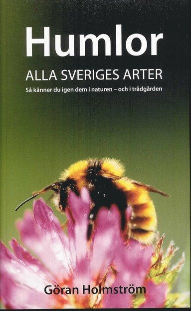 bokomslag Humlor : alla Sveriges arter : så känner du igen dem i naturen - och i trädgården
