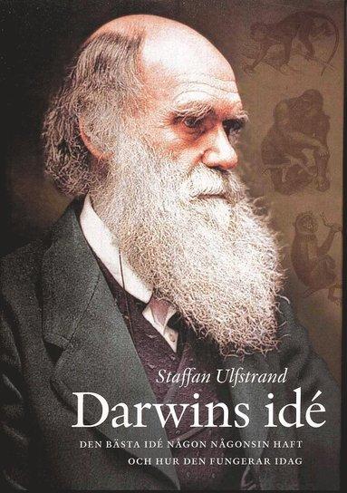 bokomslag Darwins idé : den bästa idé någon någonsin haft och hur den fungerar idag