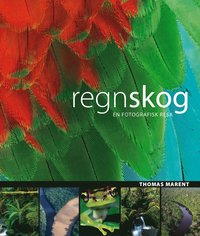 bokomslag Regnskog : [en fotografisk resa]