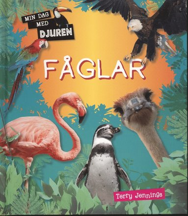 bokomslag Min dag med djuren : Fåglar