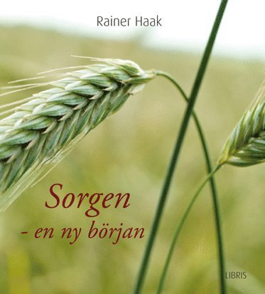 bokomslag Sorgen en ny början