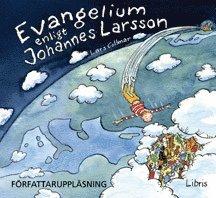 bokomslag Evangelium enligt Johannes Larsson