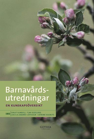 bokomslag Barnavårdsutredningar : en kunskapsöversikt