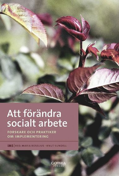bokomslag Att förändra socialt arbete : forskare och praktiker om implementering