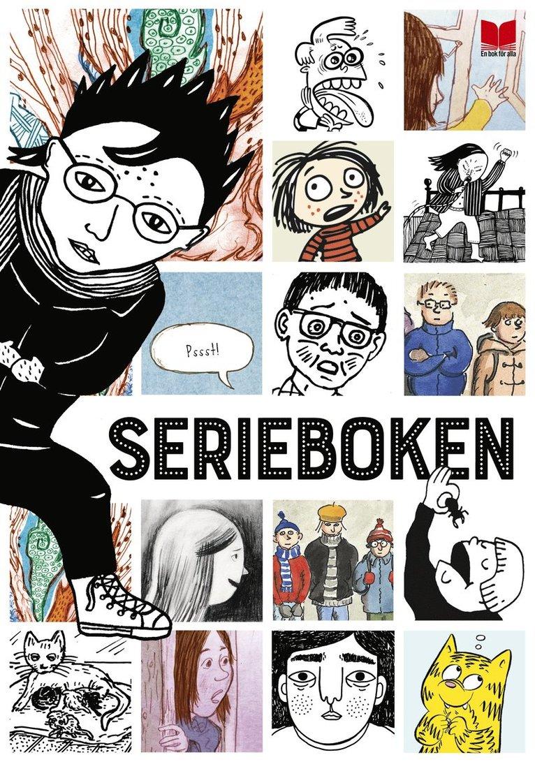 Serieboken 1
