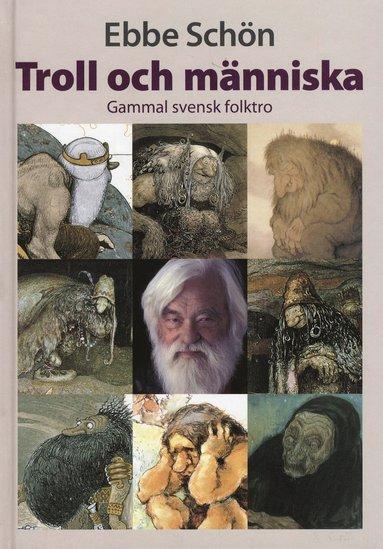bokomslag Troll och människa : gammal svensk folktro