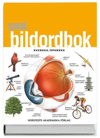 bokomslag Spansk bildordbok : svenska/spanska