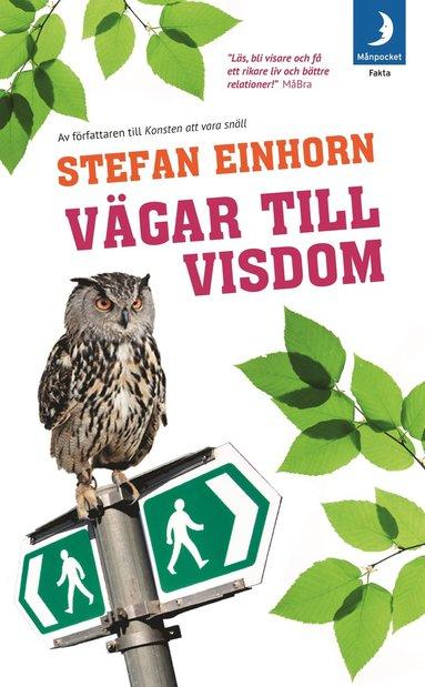 bokomslag Vägar till visdom