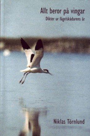 bokomslag Allt beror på vingar