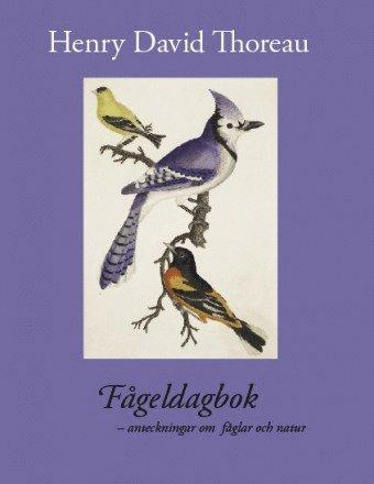 bokomslag Fågeldagbok : anteckningar om fåglar och natur