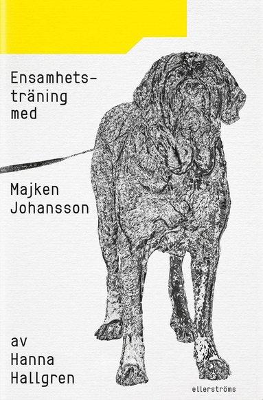 bokomslag Ensamhetsträning med Majken Johansson