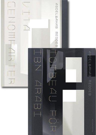 bokomslag Vita genomfarter & Ibn Arabis grav
