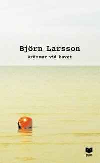 bokomslag Drömmar vid havet : Roman